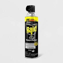 Raid Wasp & Hornet Killer 33 - 17.5oz