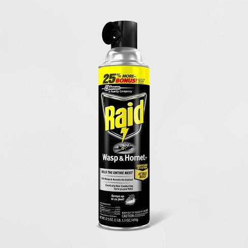 Raid Wasp & Hornet Killer 33 - 17.5oz - image 1 of 4