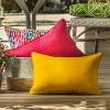 "18.5"" 2pk Paragon Raspberry Throw Pillows Pink - Pillow Perfect - image 3 of 4"