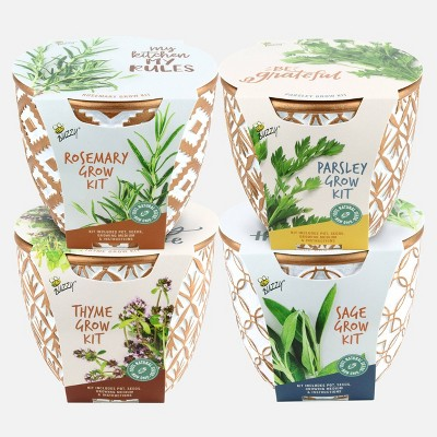 Buzzy 4ct Seed Grow Kits with Cement Pot