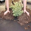 DeWitt Weed Barrier Pro Landscape Fabric in Brown 3' x 100' Refill (2 Pack) - image 3 of 4