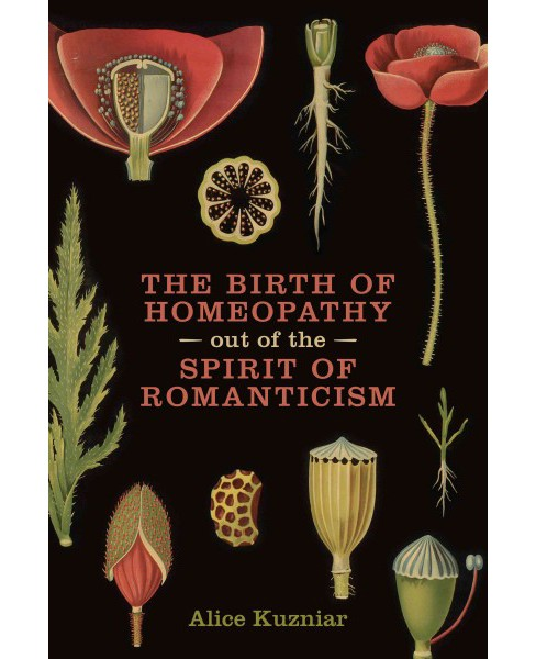 Birth of Homeopathy Out of the Spirit of Romanticism (Paperback) (Alice A. Kuzniar) - image 1 of 1