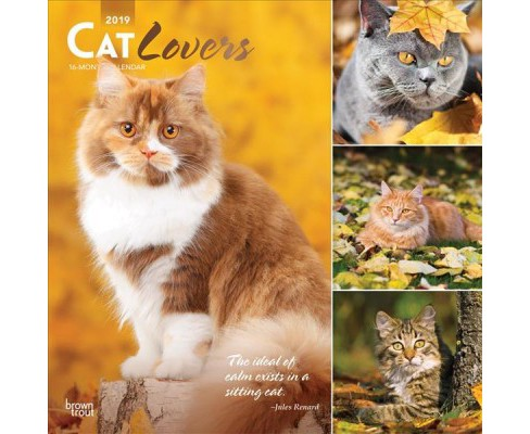Cat Lovers 2019 Calendar -  (Paperback) - image 1 of 1