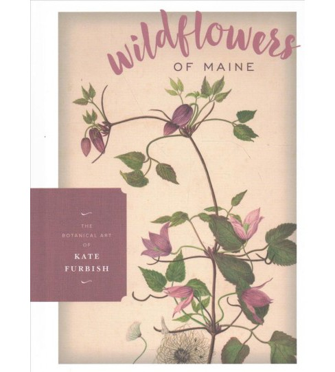 Wildflowers of Maine -  by Melissa Dow  Cullina (Hardcover) - image 1 of 1