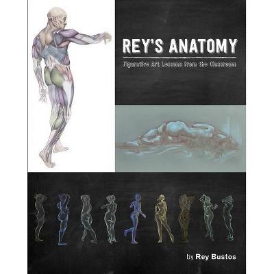 Rey's Anatomy - (Paperback)