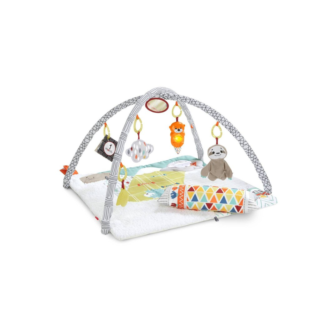?Delight all five of your baby\\\'s senses with the otter-ly engaging Perfect Sense Deluxe Gym from Fisher-Price. Its super-cozy play mat with supportive tummy-time wedge is the perfect spot for your little explorer to embark on a sensory adventure. From the lights and music of the friendly otter, to the chewy leaf teether, plush sloth lovey, scented cloud and more, there\\\'s so much for your baby to discover on this deluxe infant play gym. There\\\'s even a fold-out milestone panel for those monthly photo-opps! Where development comes into play. Sensory: Sights, sounds, textures and more?this infant gym is packed with sensory-stimulating play for your baby to discover! Gross Motor: The silly animal pals overhead encourage your baby to reach and bat during lay and play time, strengthening their gross motor skills. Fine Motor: Grasping the toys and bringing the teether to their mouth for chewy fun helps strengthen your baby\\\'s hand-eye coordination and dexterity. Gender: unisex. Pattern: Shapes.