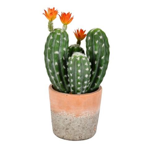 Vickerman 14 Artificial Green Cactus In Clay Pot Target