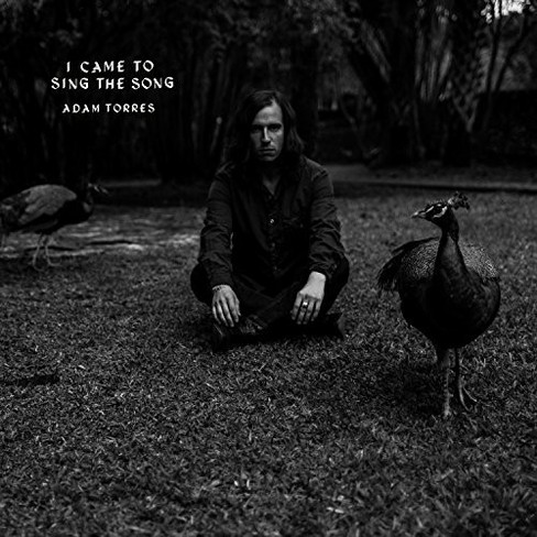 Adam Torres - I Came To Sing The Song (CD) - image 1 of 1