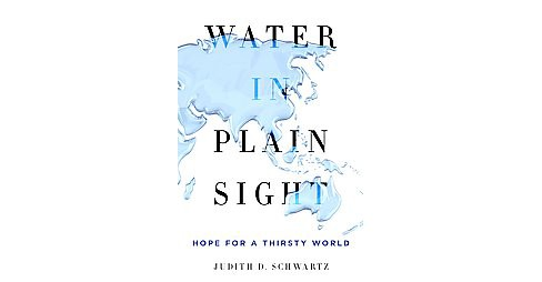 Water in Plain Sight : Hope for a Thirsty World (Hardcover) (Judith D. Schwartz) - image 1 of 1