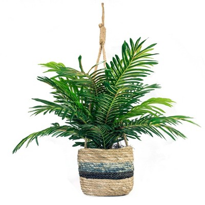 "30"" x 16"" Artificial Phoenix Palm Plant in Hanging Basket - LCG Florals"