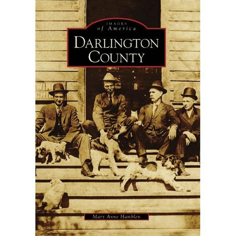 Darlington County (Paperback) - image 1 of 1
