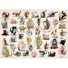 Eurographics Inc. Yoga Kittens 300 Piece XL Jigsaw Puzzle - image 3 of 4