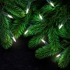 Philips 300ct Christmas Incandescent Smooth Mini String Lights Clear - image 3 of 3