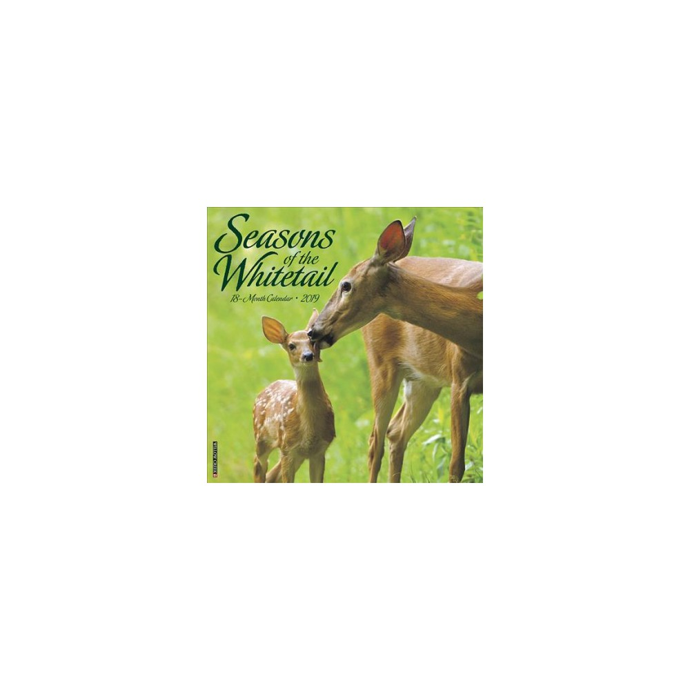 Seasons of the Whitetail 2019 Calendar - (Paperback)