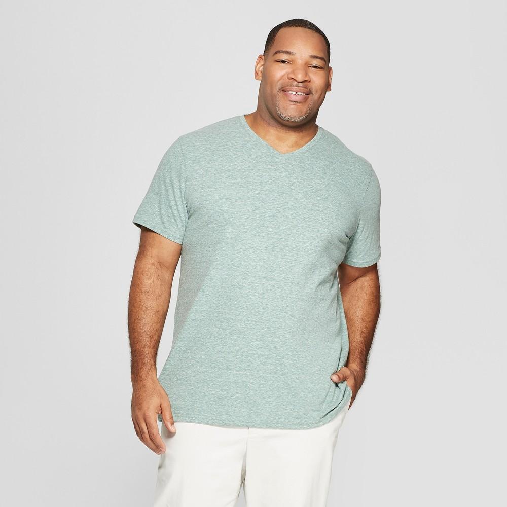 Men's Big & Tall Standard Fit Short Sleeve Novelty V-Neck T-Shirt - Goodfellow & Co Bracken Fern 4XBT, Green