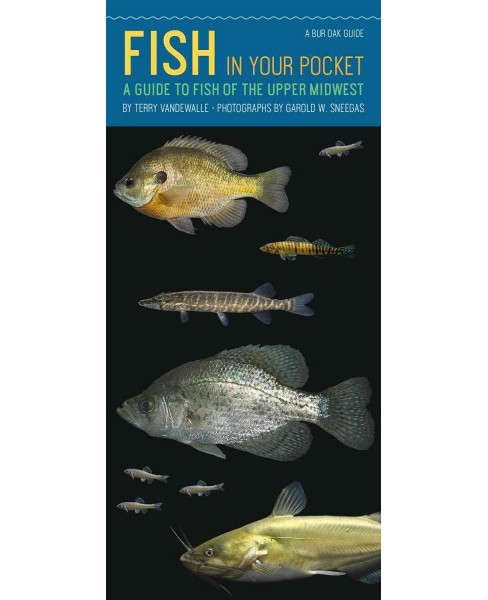Fish in Your Pocket : A Guide to Fish of the Upper Midwest (Paperback) (Terry Vandewalle) - image 1 of 1
