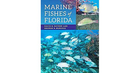 Marine Fishes of Florida (Paperback) (David B. Snyder & George H. Burgess) - image 1 of 1