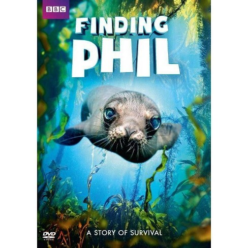 Finding Phil (DVD) - image 1 of 1