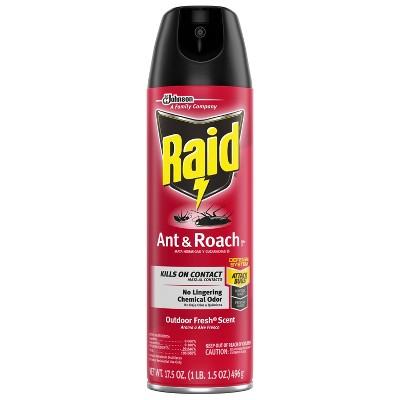 Raid Ant & Roach