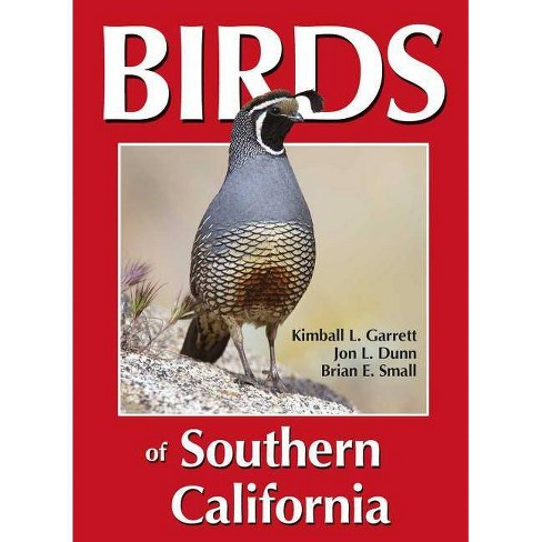 Birds of Southern California - by  Kimball L Garrett & Jon L Dunn (Paperback) - image 1 of 1