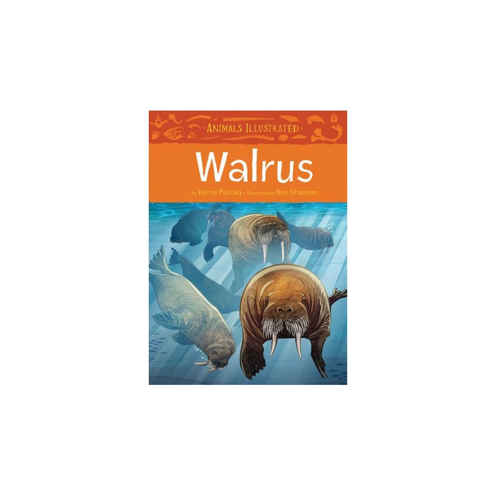Walrus - (Animals Illustrated) by Herve Paniaq (Hardcover)