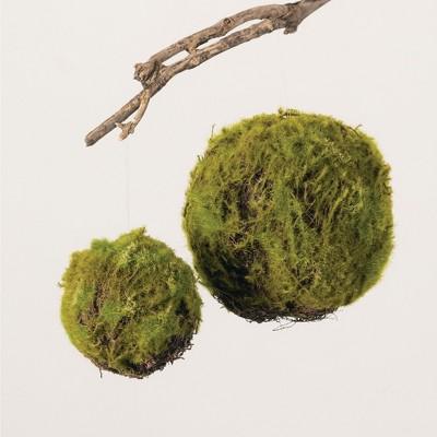 """Sullivans Set of 2 Moss Orbs Decorative Filler 8""""H & 5.5""""H Green"""
