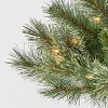 3ft/2pk Pre-lit Artificial Christmas Tree Virginia Pine Clear Lights - Wondershop™ - image 3 of 4
