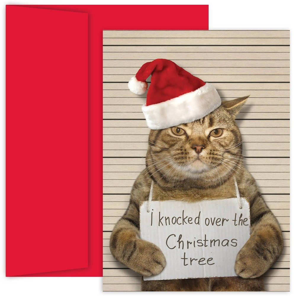 Image of 18ct Bad Cat Greeting Cards - Masterpiece Studio