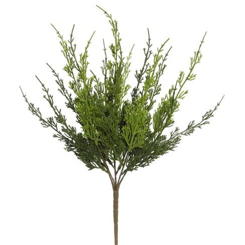"Vickerman 19"" Artificial Green Monterey Cypress Bush. - image 1 of 2"