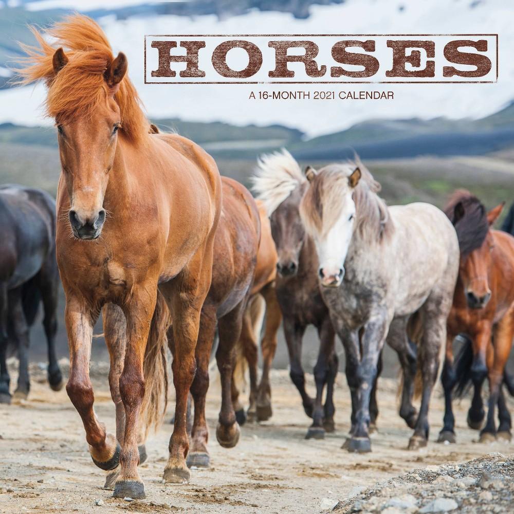 2021 Wall Calendar 12 34 X 12 34 Horses Trends International