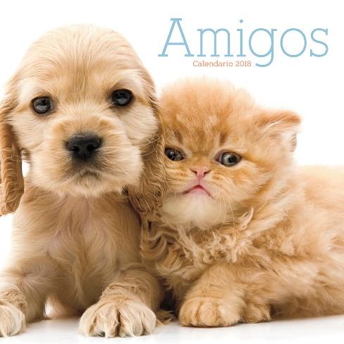2018 Amigos (Buddies) Wall Calendar(Spanish Edition ) - Trends International - image 1 of 3