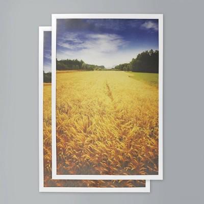 "(Set of 2) 24"" x 36"" Poster Frame White - Room Essentials™"