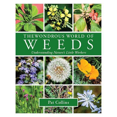The Wondrous World of Weeds - by  Pat Collins (Paperback) - image 1 of 1