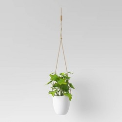 Artificial Hanging Potted Plant - Room Essentials™