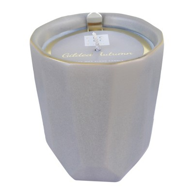 9.52oz Faceted Jar Candle Gilded Autumn - Chesapeake Bay Candle