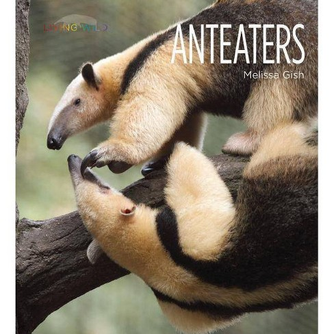 Anteaters - (Living Wild) by  Melissa Gish (Paperback) - image 1 of 1