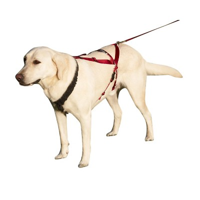 Ultra Paws One Harness for Dogs - X-Large - Black