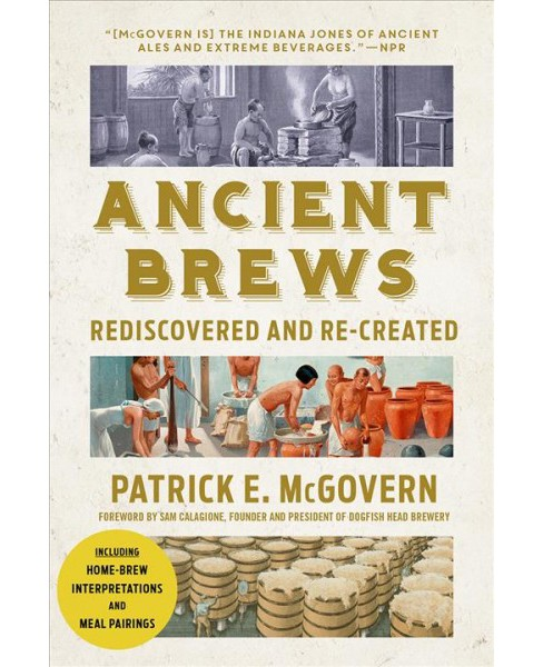 Ancient Brews : Rediscovered and Re-created -  Reprint by Patrick E. McGovern (Paperback) - image 1 of 1