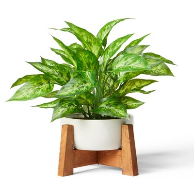 """14"""" x 10"""" Faux Philodendron Birkin Plant with Wood Stand Planter White - Hilton Carter for Target"""
