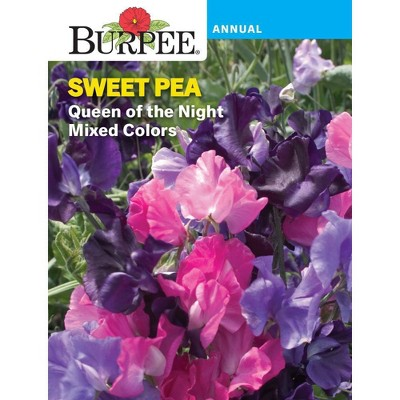 BURPEE Sweet Pea Queen of the Night - Mixed Colors