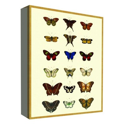 "11"" x 14"" Butterfly Collection I Decorative Wall Art - PTM Images"