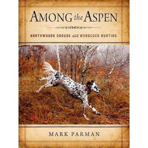 Among the Aspen - by  Mark Parman (Hardcover) - image 1 of 1