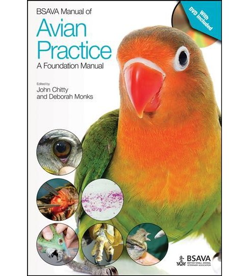 Bsava Manual of Avian Practice : A Foundation Manual -  by John Chitty & Deborah Monks (Paperback) - image 1 of 1