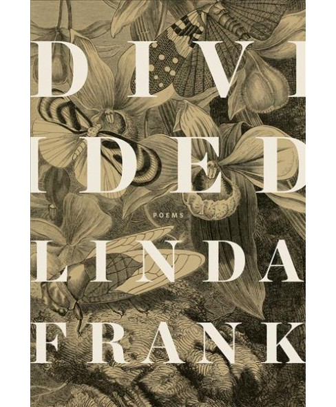 Divided -  by Linda Frank (Paperback) - image 1 of 1