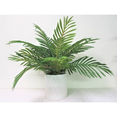 "19"" x 18"" Artificial Phoenix Palm Plant in Ceramic Pot White - LCG Florals"