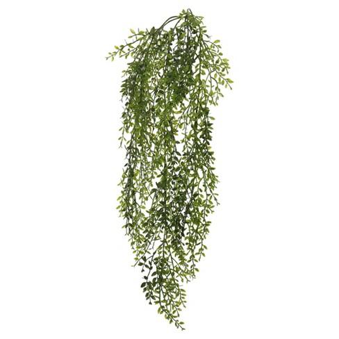 "Artificial Lemon Beauty Leaf Vine (34"") Green - Vickerman - image 1 of 1"