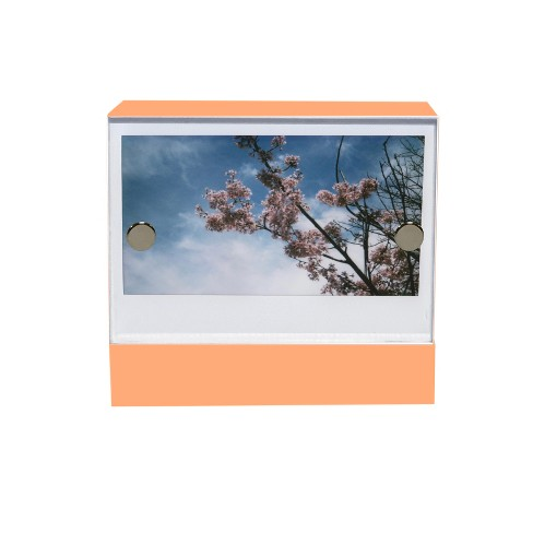 "2""X3"" Acrylic Mini Frame Peach Passion - Project 62™ - image 1 of 4"