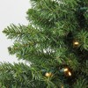 Northlight 3' Prelit Artificial Christmas Tree Canadian Pine - Clear LED Lights - image 2 of 3