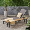 Waterloo Mesh and Aluminum Table Chaise Lounge - Gray - Christopher Knight Home - image 2 of 4