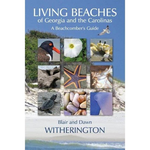 Living Beaches of Georgia and the Carolinas - by  Blair Witherington & Dawn Witherington (Paperback) - image 1 of 1